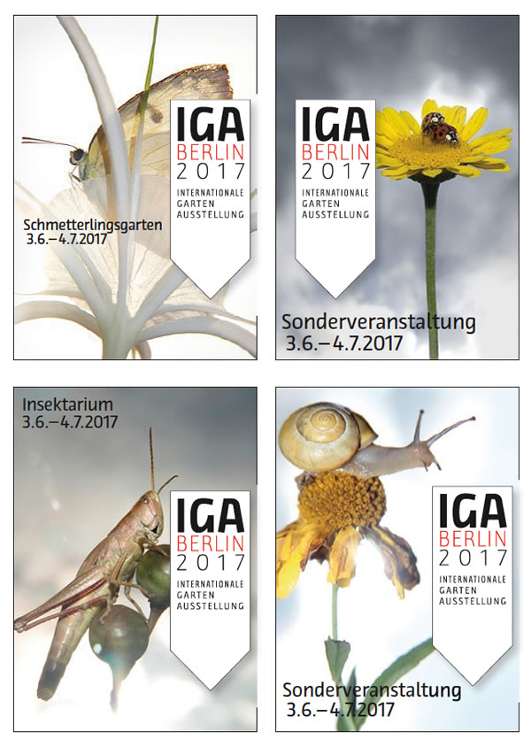 IGA_01